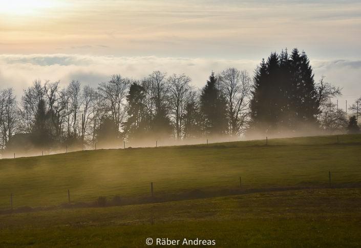 Adetswil im Nebel