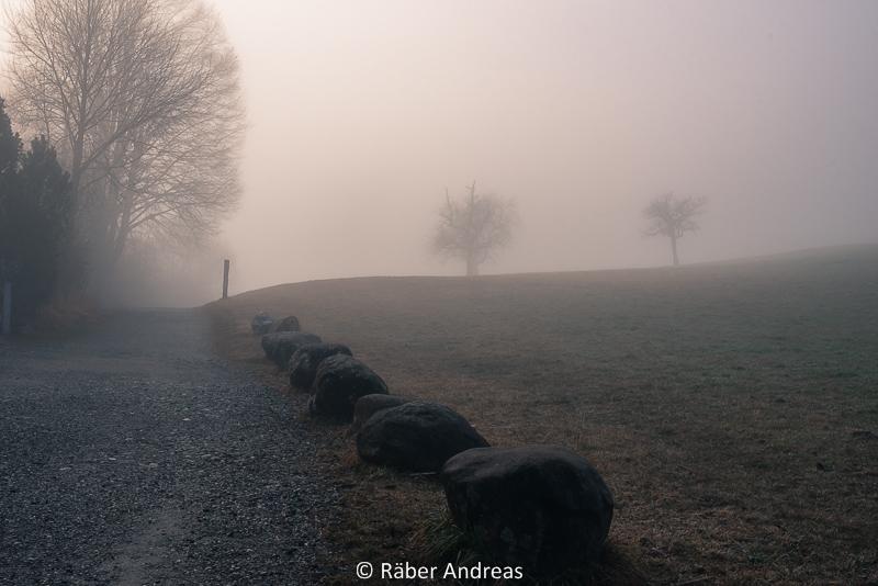 Rund um den Pfäffikersee im Nebel