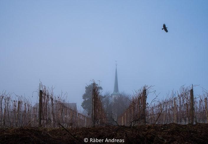 Pfäffikersee, Seegräben, Kirche