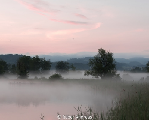 Pfäffikersee, Sonnenaufgang